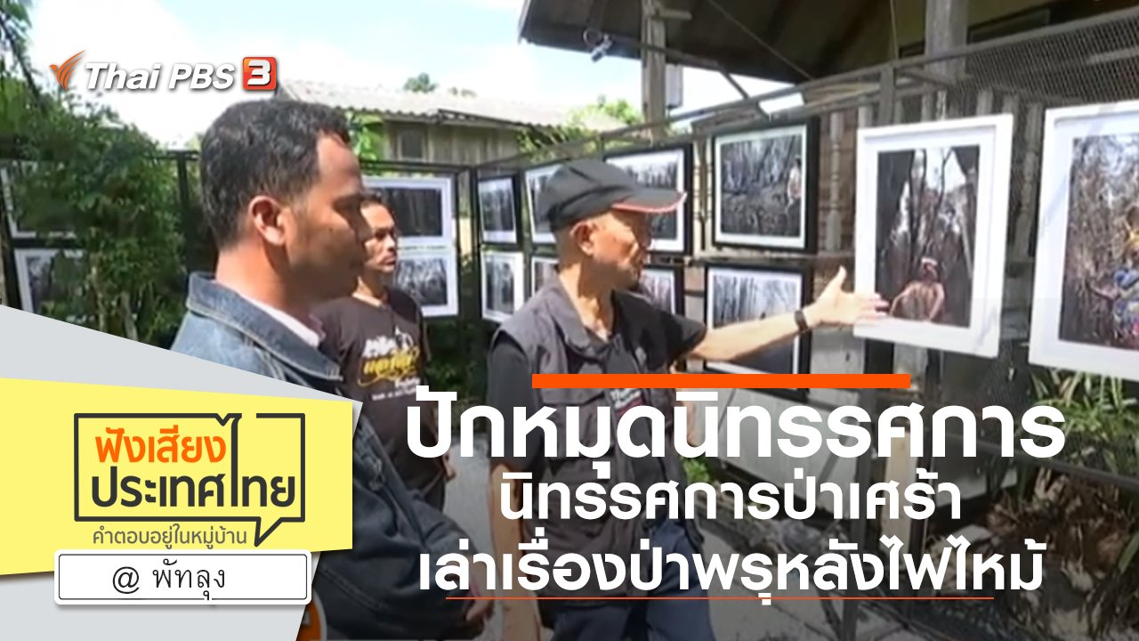 """ฟังเสียงประเทศไทย - Online first Ep.82 ปักหมุด """"นิทรรศการป่าเศร้า"""" เล่าเรื่องป่าพรุหลังไฟไหม้"""