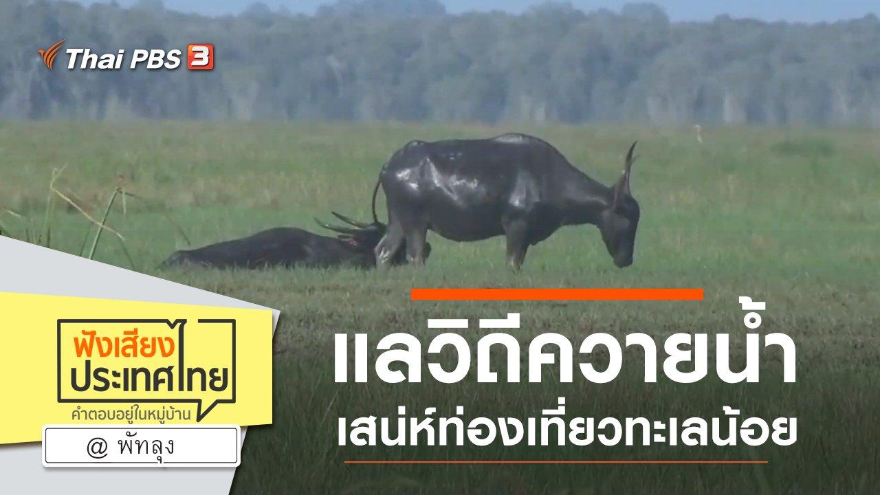 ฟังเสียงประเทศไทย - Online first Ep.83 แลวิถีควายน้ำ เสน่ห์ท่องเที่ยวทะเลน้อย จ.พัทลุง