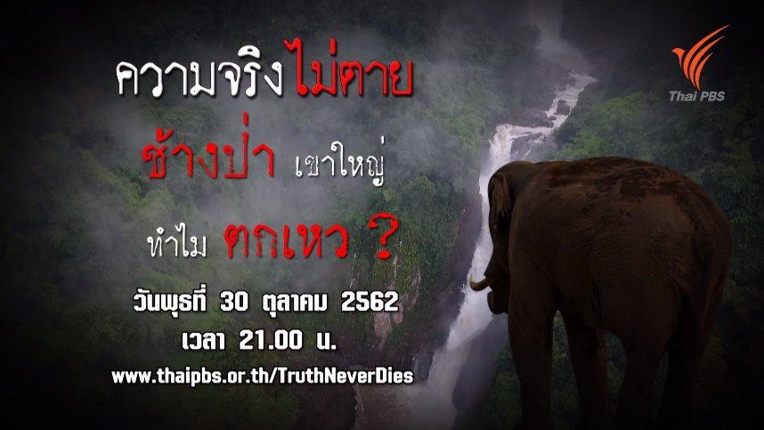ความจริงไม่ตาย - ช้างป่าเขาใหญ่ทำไมตกเหว ?