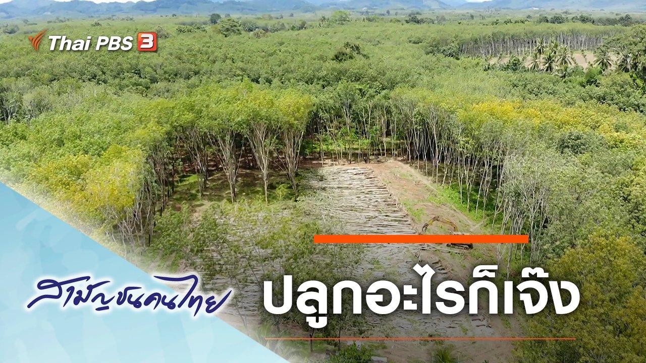 สามัญชนคนไทย - ปลูกอะไรก็เจ๊ง