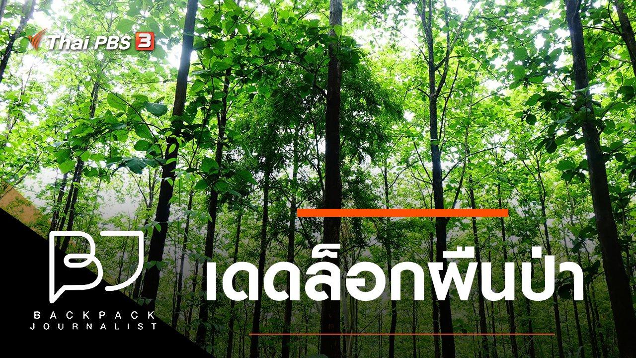 Backpack Journalist - เดดล็อกผืนป่า