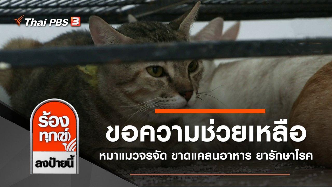 ร้องทุก(ข์) ลงป้ายนี้ - ขอความช่วยเหลือหมาแมวจรจัด ขาดแคลนอาหาร ยารักษาโรค กทม.