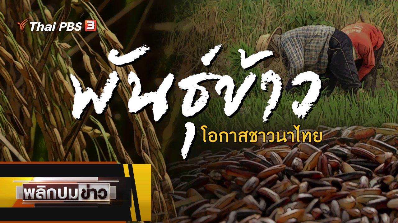 พลิกปมข่าว - พันธุ์ข้าวโอกาสชาวนาไทย