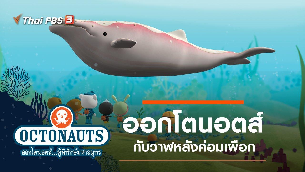 การ์ตูน ออกโตนอตส์...ผู้พิทักษ์มหาสมุทร - ออกโตนอตส์กับวาฬหลังค่อมเผือก