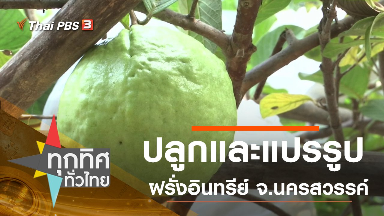 ทุกทิศทั่วไทย - ประเด็นข่าว (11 ก.พ. 63)