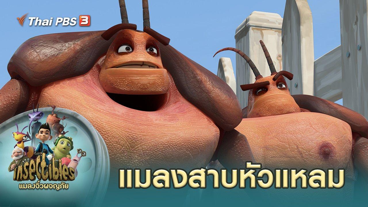 แมลงจิ๋วผจญภัย - แมลงสาบหัวแหลม