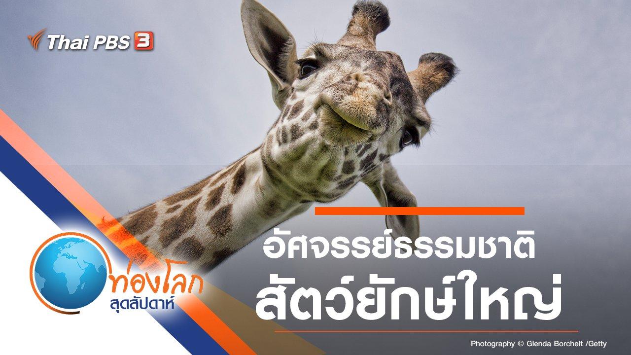 ท่องโลกสุดสัปดาห์ - อัศจรรย์ธรรมชาติสัตว์ยักษ์ใหญ่