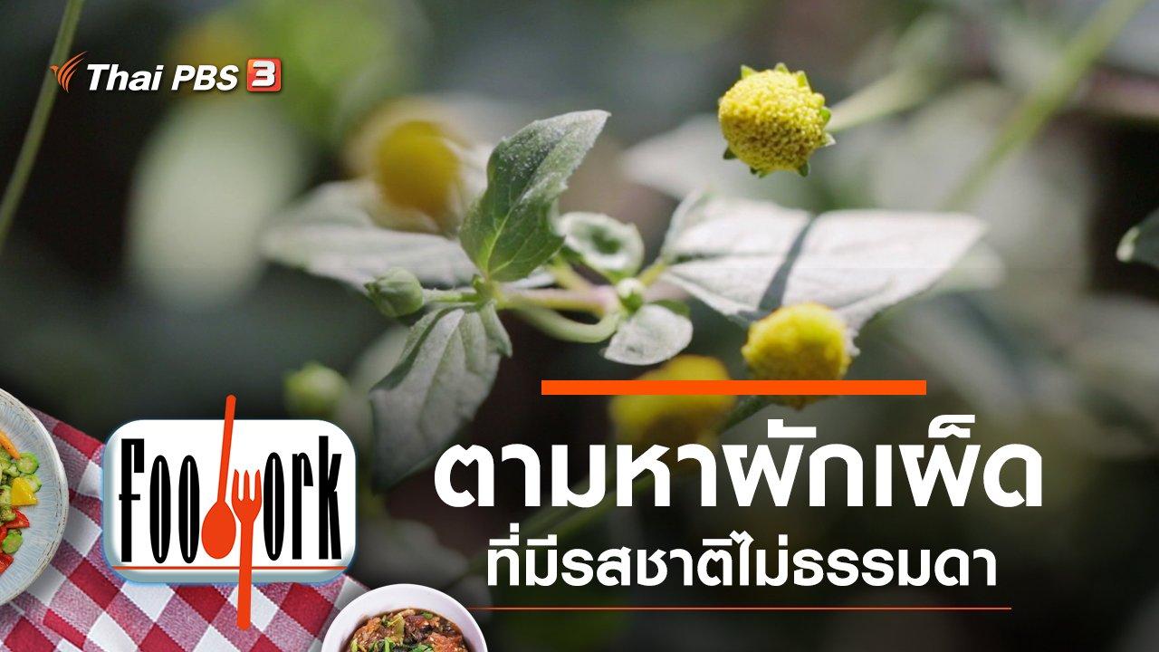 Foodwork - ผักเผ็ด