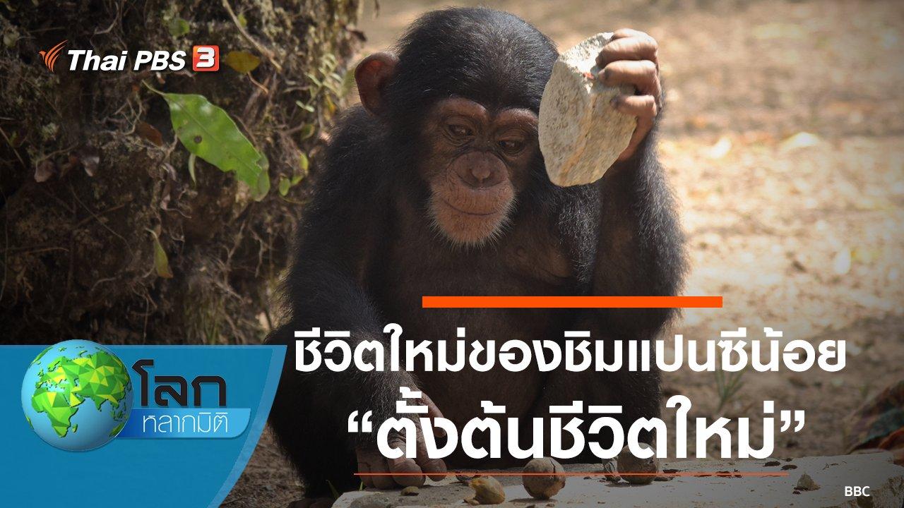 โลกหลากมิติ - ชีวิตใหม่ของชิมแปนซีน้อย ตอน ตั้งต้นชีวิตใหม่