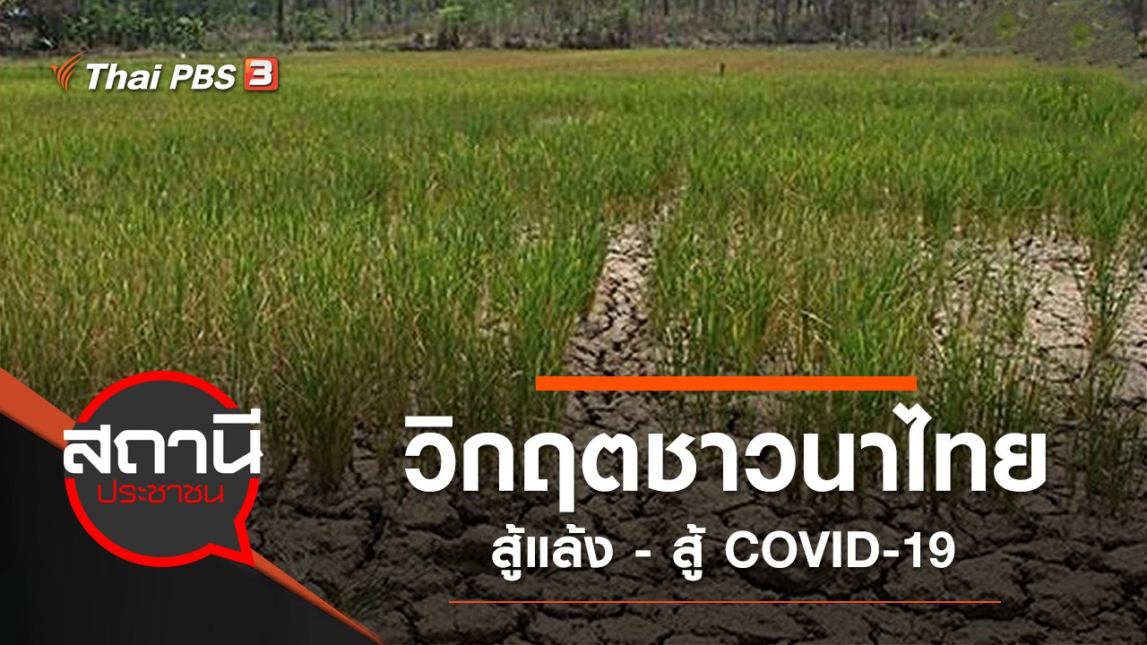 สถานีประชาชน - วิกฤตชาวนาไทย สู้แล้ง - สู้ COVID-19