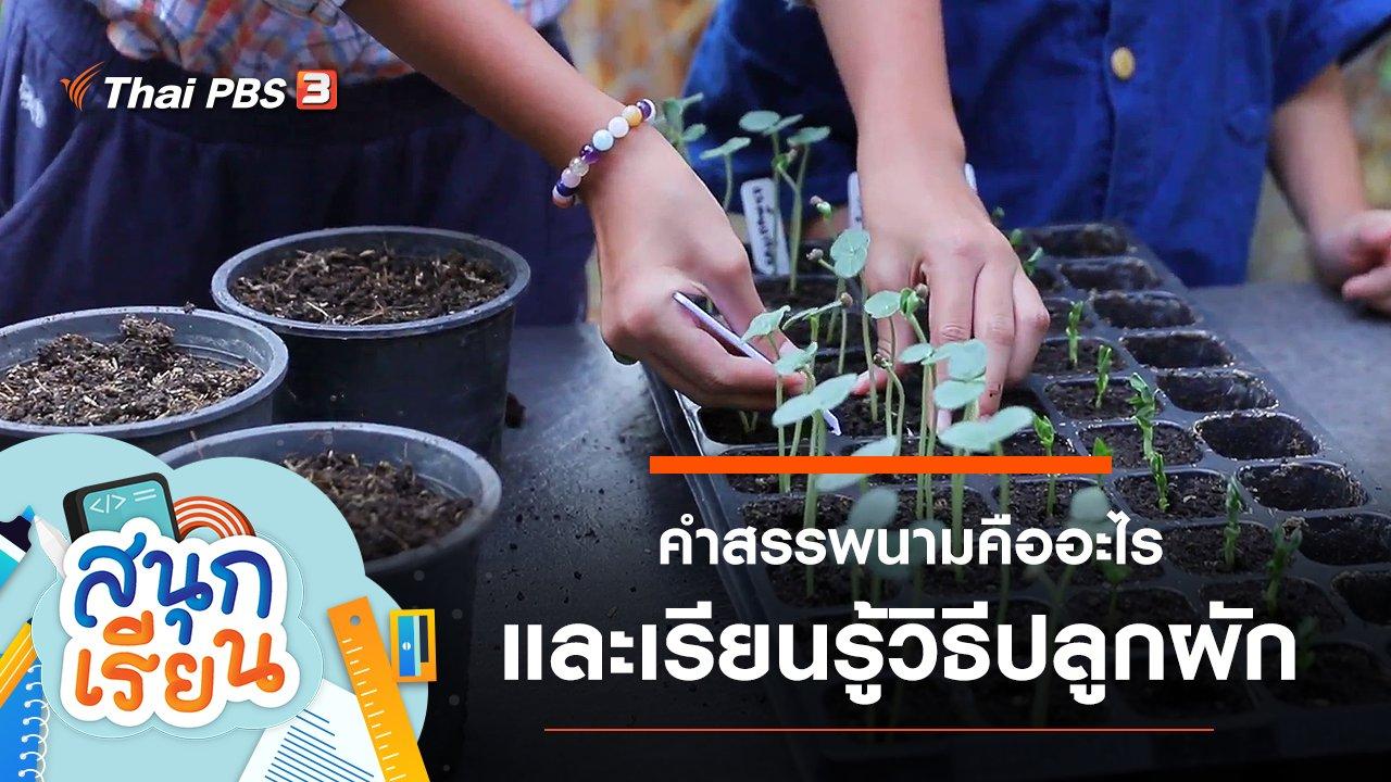 สนุกเรียน - คำสรรพนามคืออะไร และเรียนรู้วิธีปลูกผัก