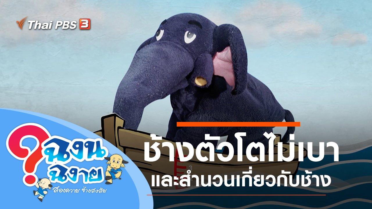 ฉงน ฉงาย สองควายช่างสงสัย - ช้างตัวโตไม่เบา