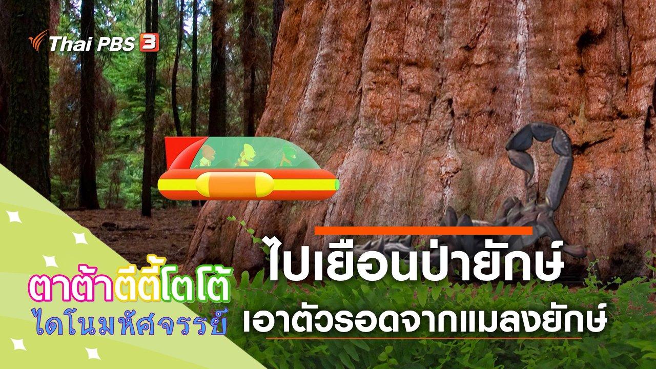 TataTitiToto ไดโนมหัศจรรย์ - ไปเยือนป่ายักษ์