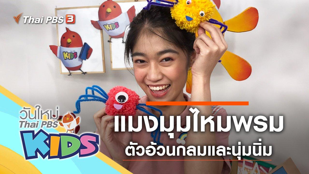 วันใหม่ไทยพีบีเอสคิดส์ - แมงมุมไหมพรม