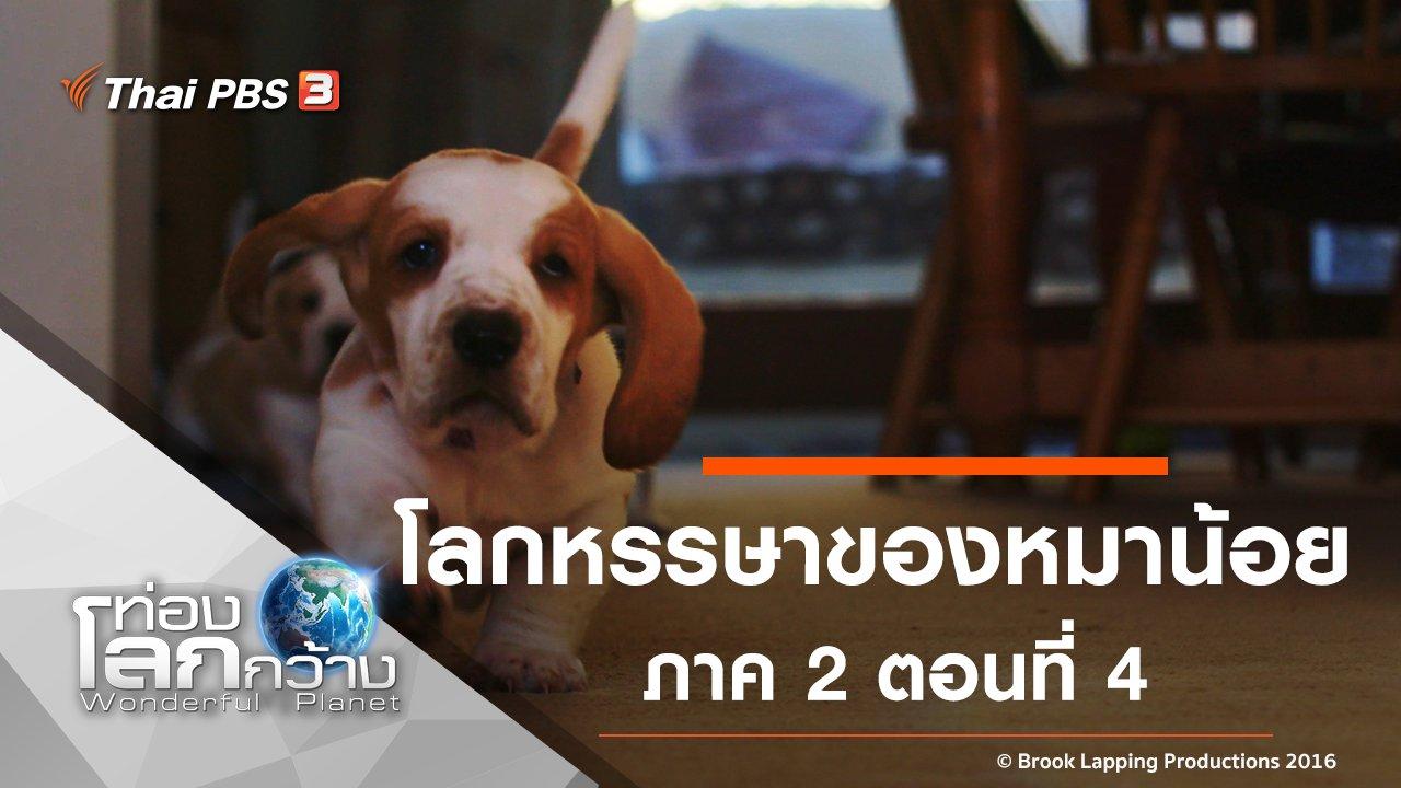 ท่องโลกกว้าง - โลกหรรษาของหมาน้อย ภาค 2 ตอนที่ 4