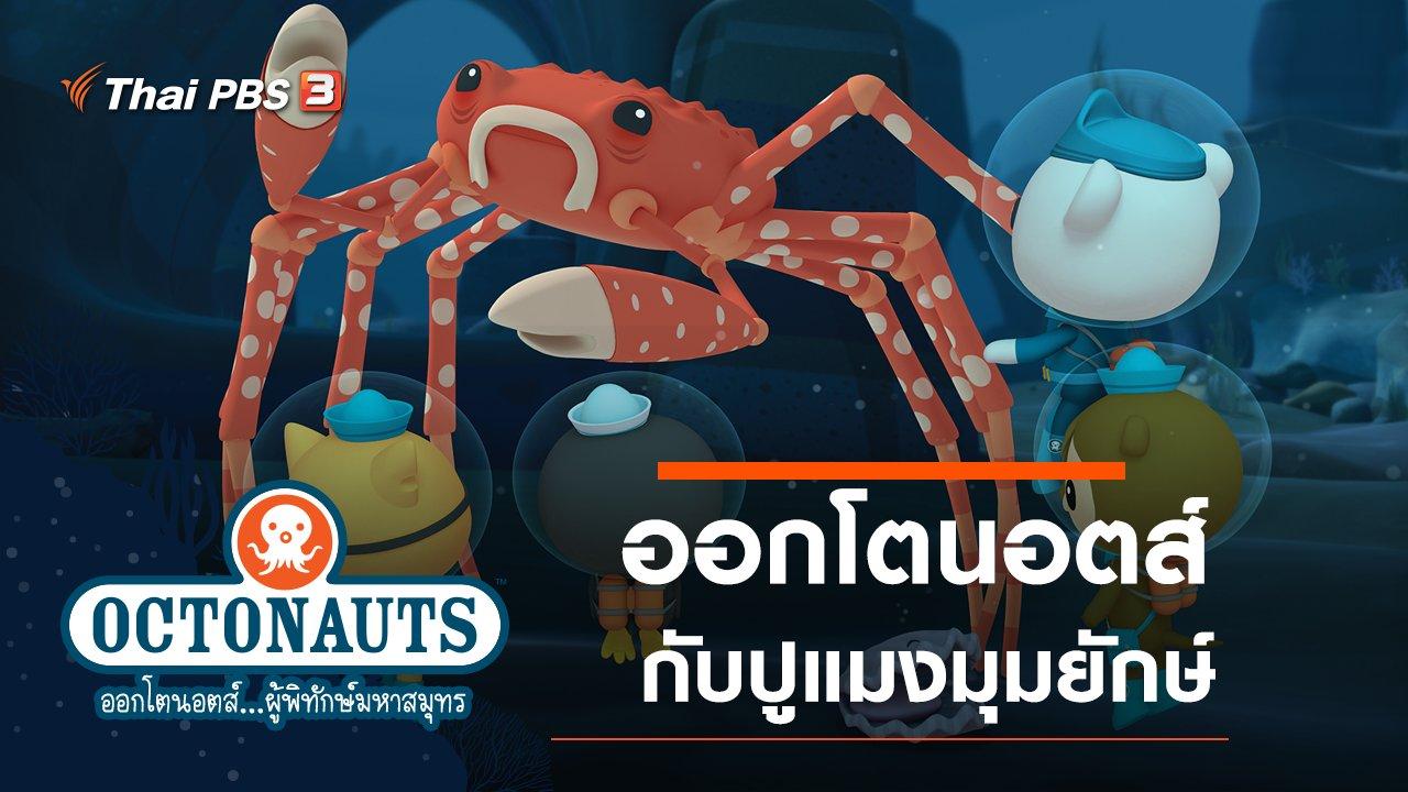 ออกโตนอตส์...ผู้พิทักษ์มหาสมุทร - ออกโตนอตส์กับปูแมงมุมยักษ์