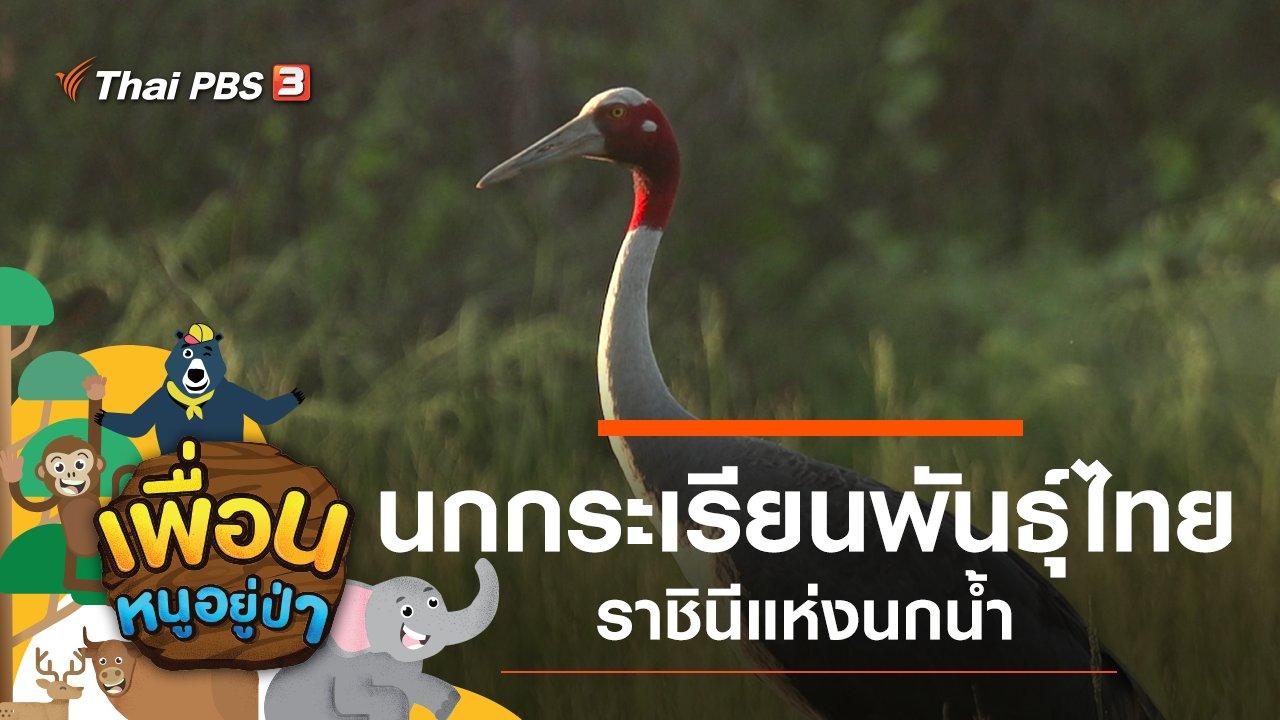เพื่อนหนูอยู่ป่า - นกกระเรียนพันธุ์ไทย ราชินีแห่งนกน้ำ