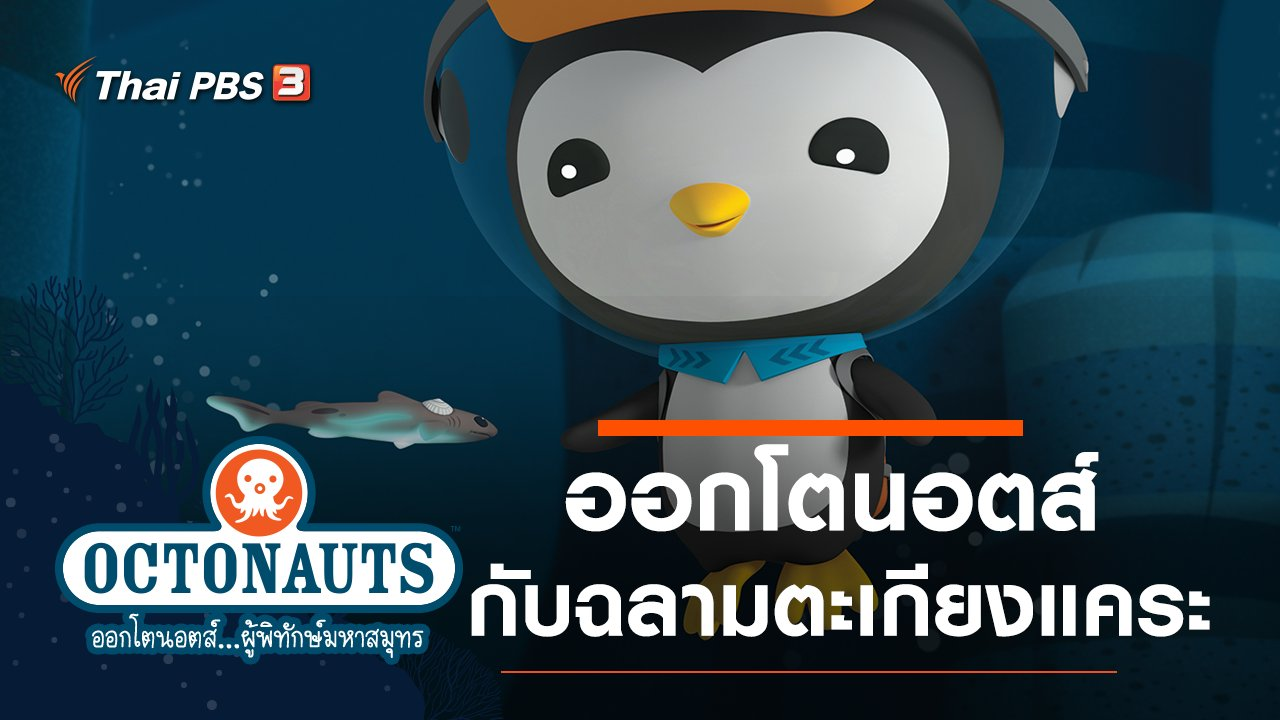 ออกโตนอตส์...ผู้พิทักษ์มหาสมุทร - ออกโตนอตส์กับฉลามตะเกียงแคระ