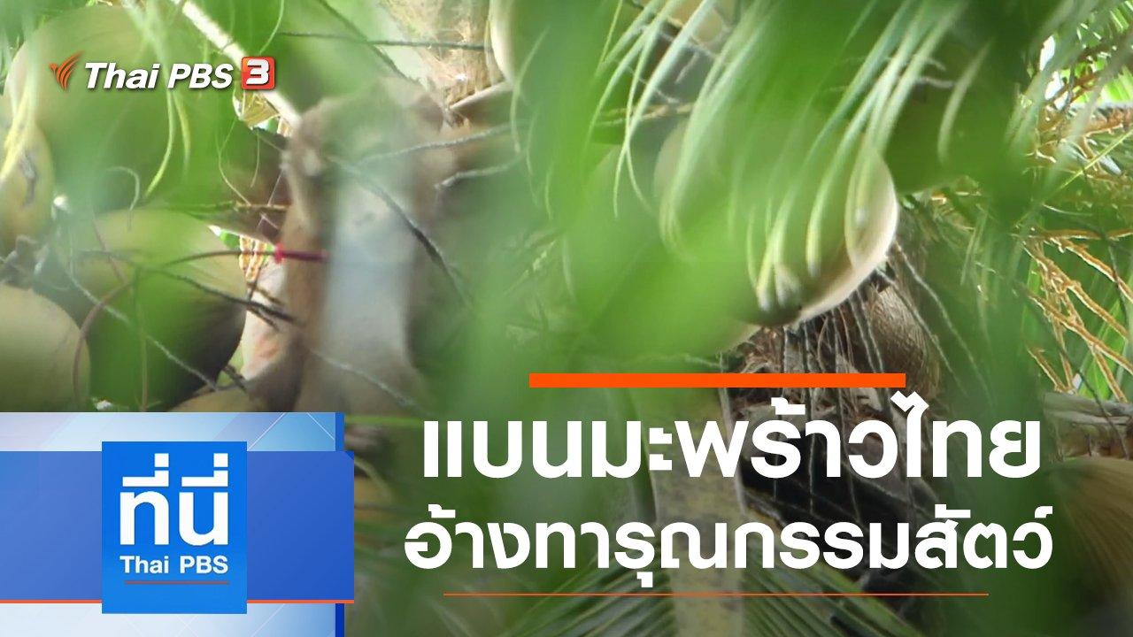 ที่นี่ Thai PBS - ประเด็นข่าว (6 ก.ค. 63)