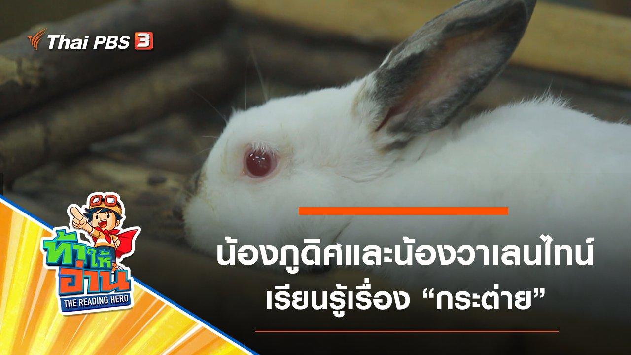 ท้าให้อ่าน The Reading Hero - กระต่าย : น้องภูดิศและน้องวาเลนไทน์