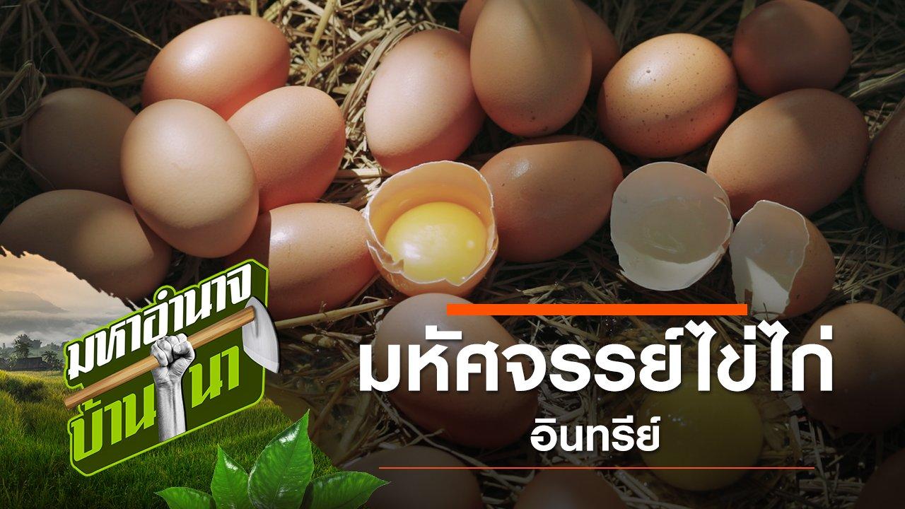 มหาอำนาจบ้านนา - มหัศจรรย์ไข่ไก่