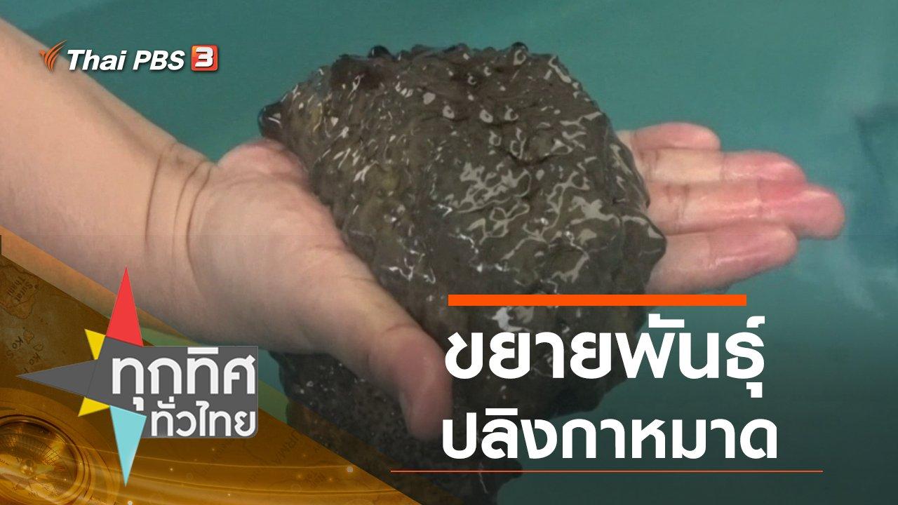 ทุกทิศทั่วไทย - ประเด็นข่าว (16 ก.ค. 63)