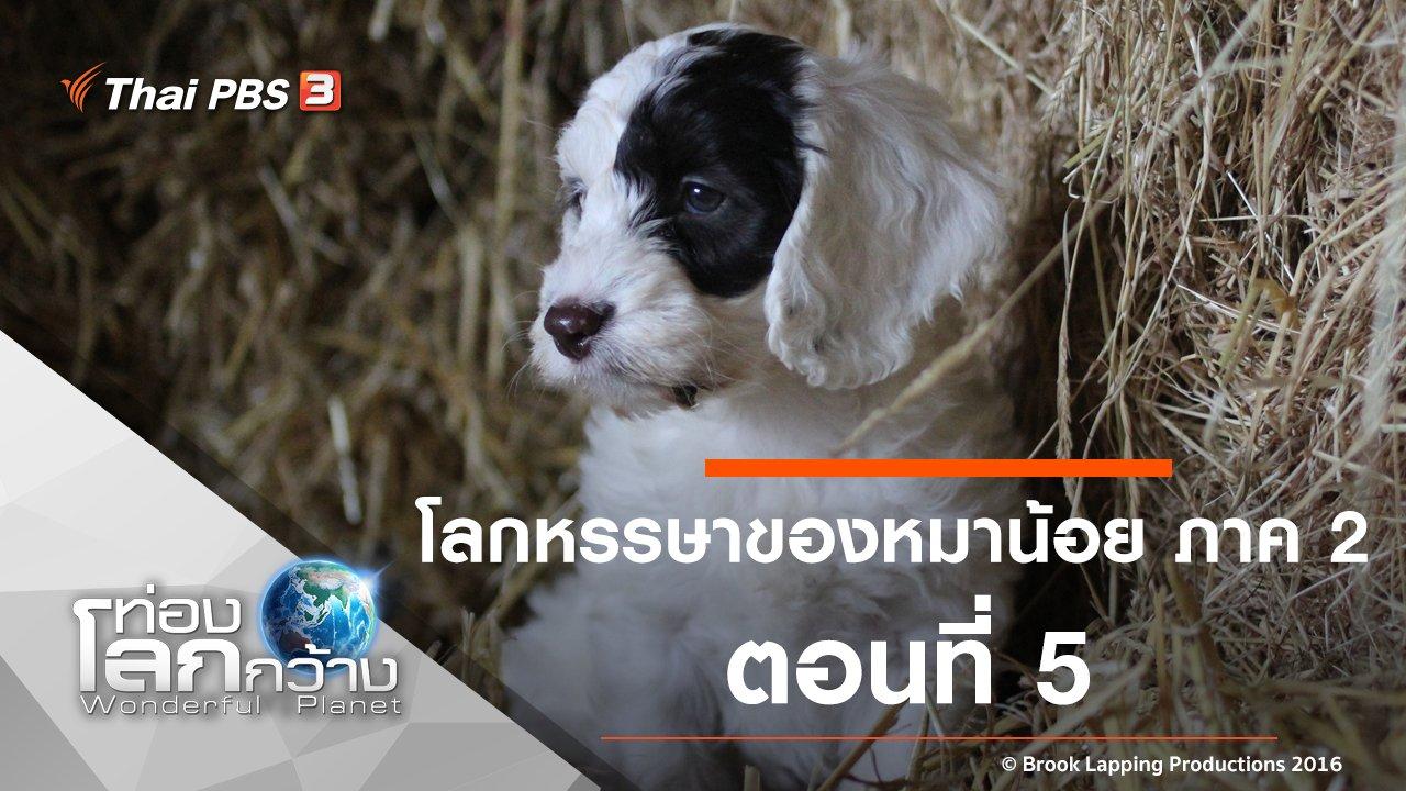 ท่องโลกกว้าง - โลกหรรษาของหมาน้อย ภาค 2 ตอนที่ 5