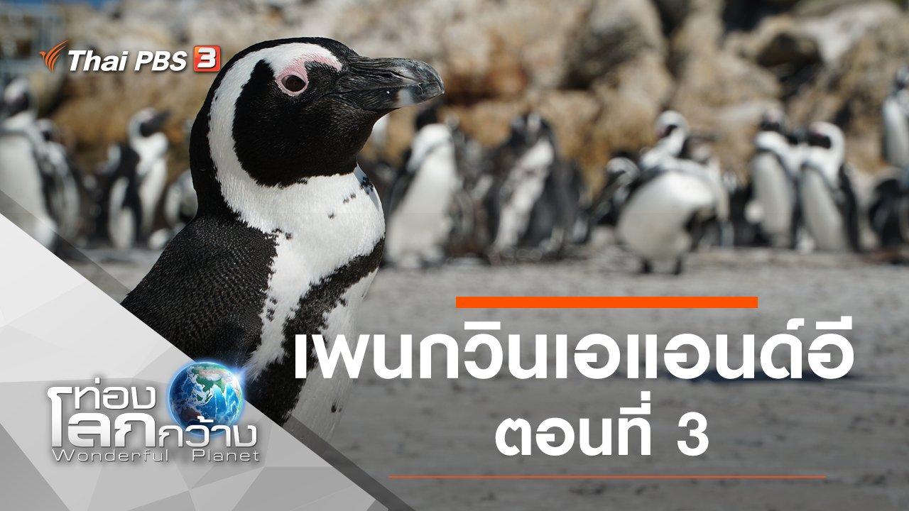 ท่องโลกกว้าง - เพนกวินเอแอนด์อี ตอนที่ 3