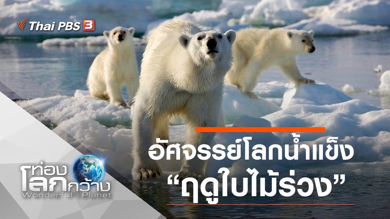 ท่องโลกกว้าง - อัศจรรย์โลกน้ำแข็ง ตอน ฤดูใบไม้ร่วง