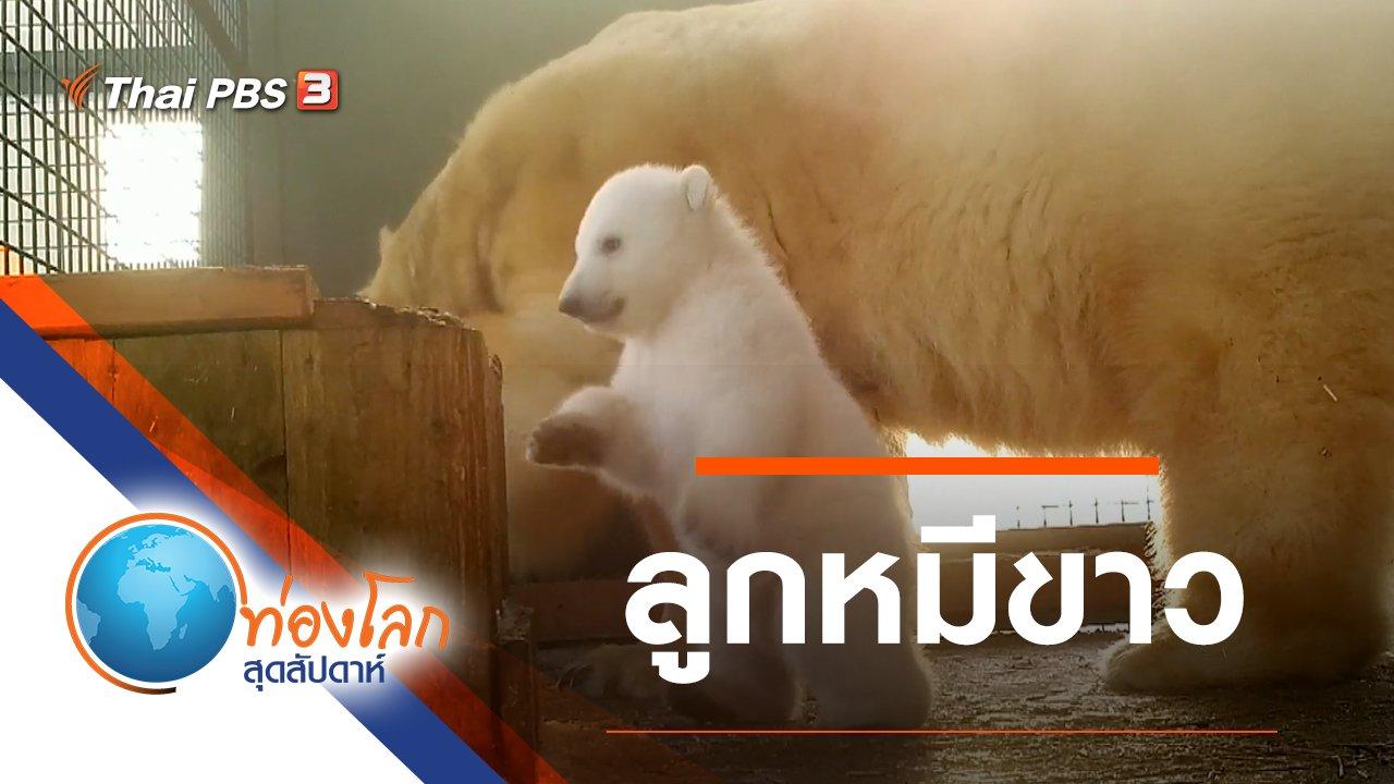 ท่องโลกสุดสัปดาห์ - ลูกหมีขาว
