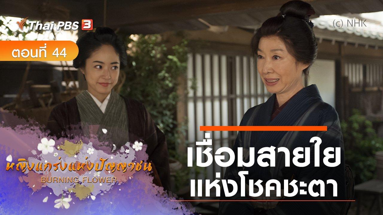 ซีรีส์ญี่ปุ่น หญิงแกร่งแห่งปัญญาชน - ซีรีส์ญี่ปุ่น หญิงแกร่งแห่งปัญญาชน : ตอนที่ 44 เชื่อมสายใยแห่งโชคชะตา