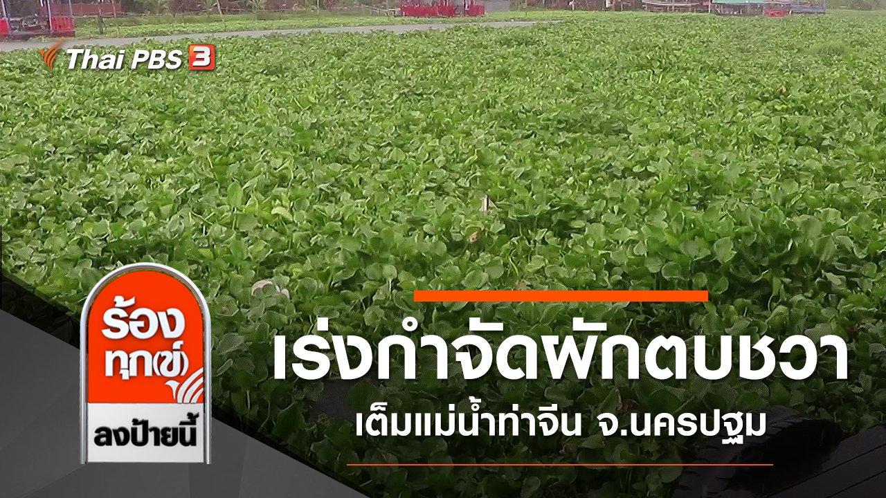 ร้องทุก(ข์) ลงป้ายนี้ - เร่งกำจัดผักตบชวาเต็มแม่น้ำท่าจีน จ.นครปฐม