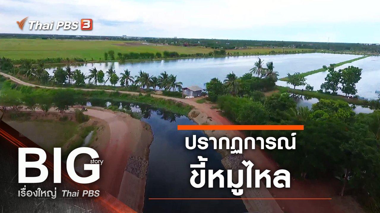 Big Story เรื่องใหญ่ Thai PBS - ปรากฏการณ์ขี้หมูไหล