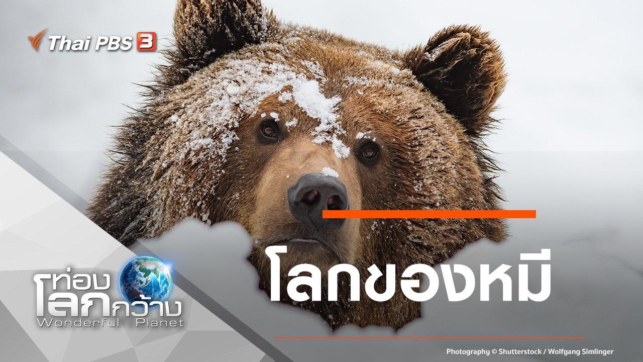 ท่องโลกกว้าง - โลกของหมี