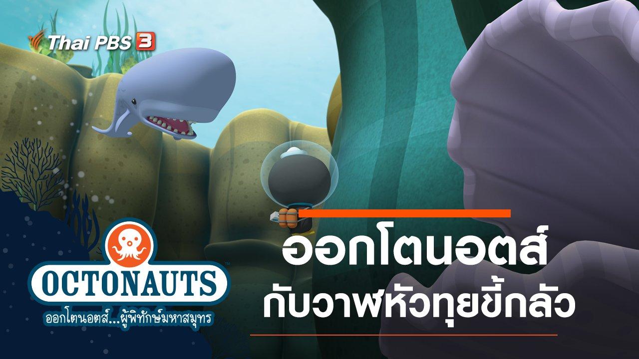 การ์ตูน ออกโตนอตส์...ผู้พิทักษ์มหาสมุทร - ออกโตนอตส์กับวาฬหัวทุยขี้กลัว