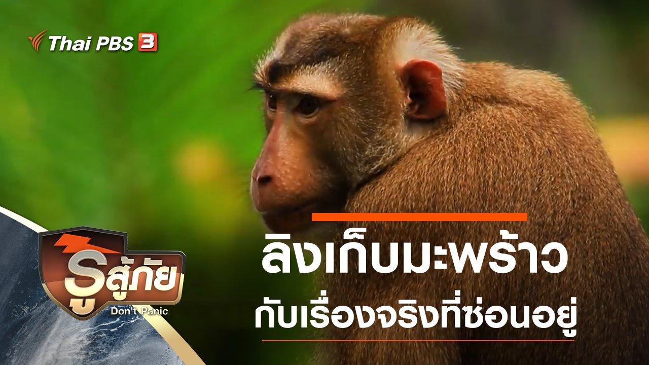 รู้สู้ภัย Don't Panic - เรื่องจริงของลิงเก็บมะพร้าว