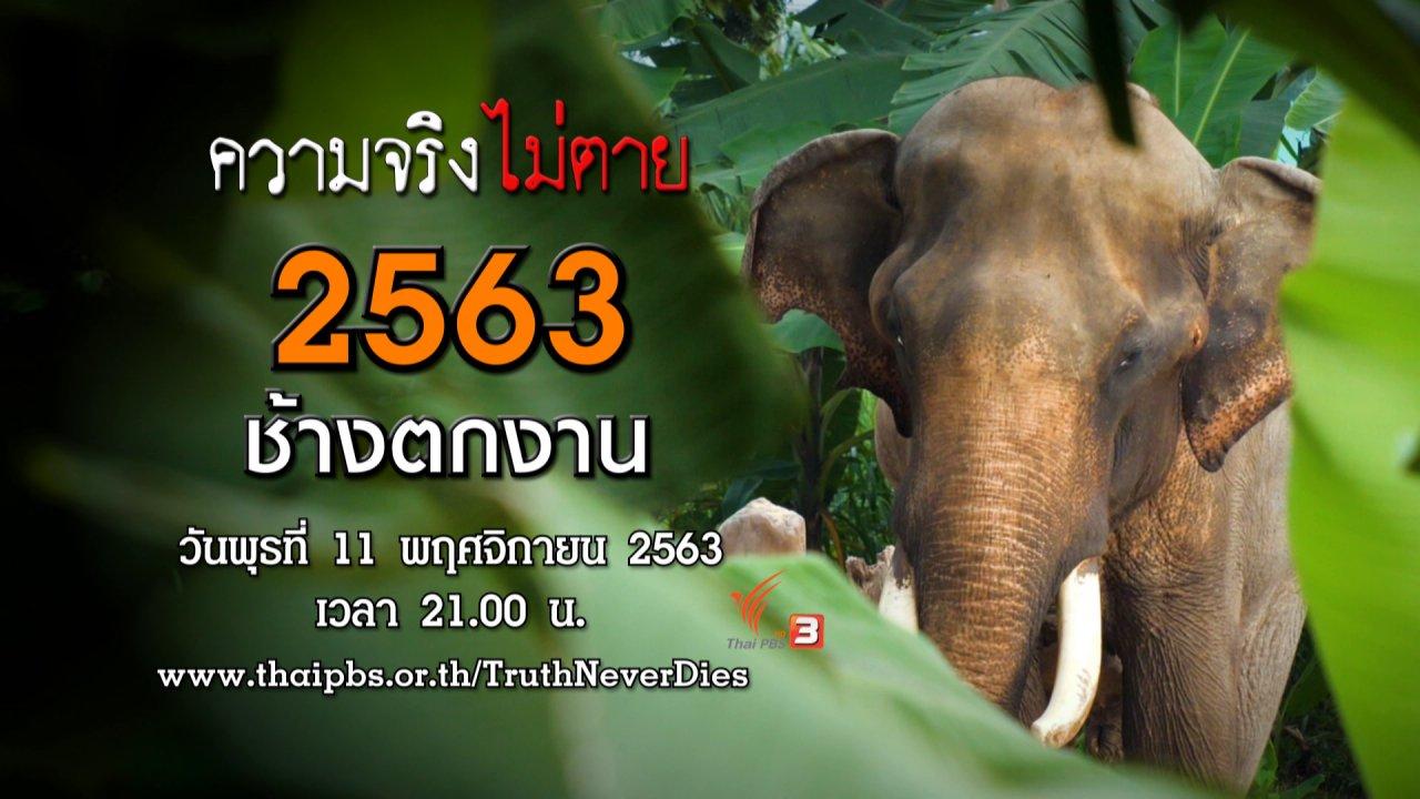 ความจริงไม่ตาย - 2563 ช้างตกงาน
