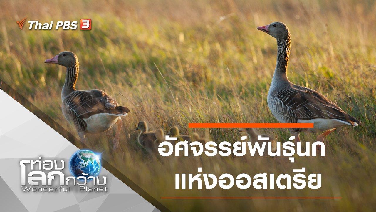 ท่องโลกกว้าง - อัศจรรย์พันธุ์นกแห่งออสเตรีย