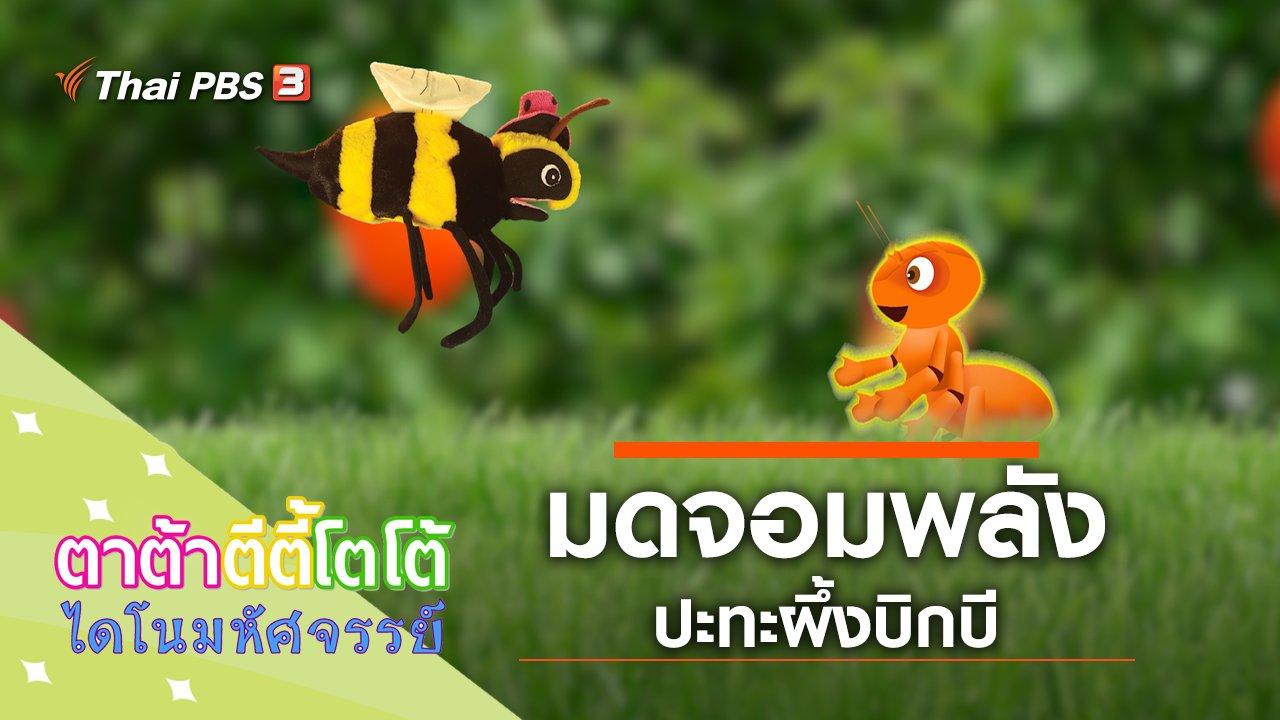 TataTitiToto ไดโนมหัศจรรย์ - มดจอมพลังปะทะผึ้งบิกบี