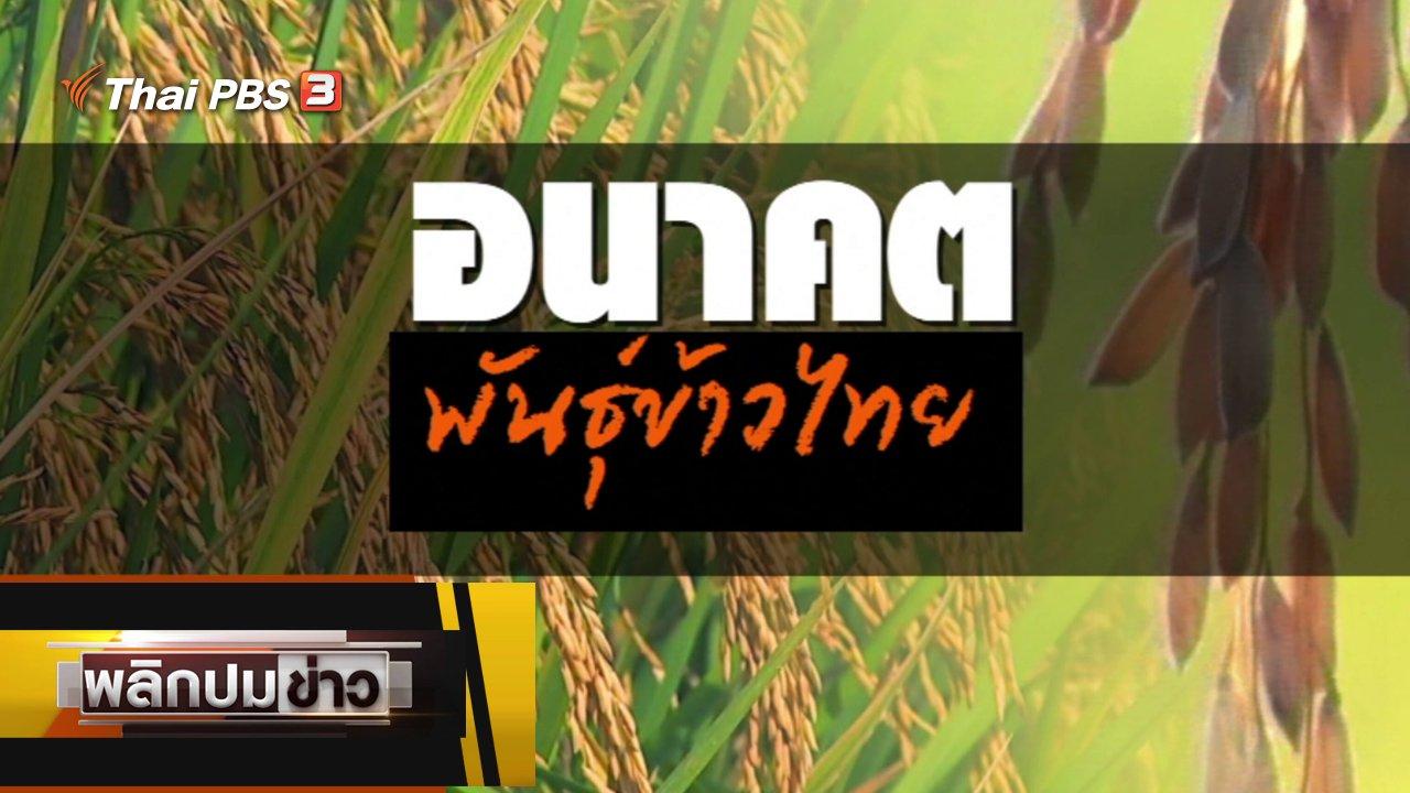 พลิกปมข่าว - อนาคตพันธุ์ข้าวไทย