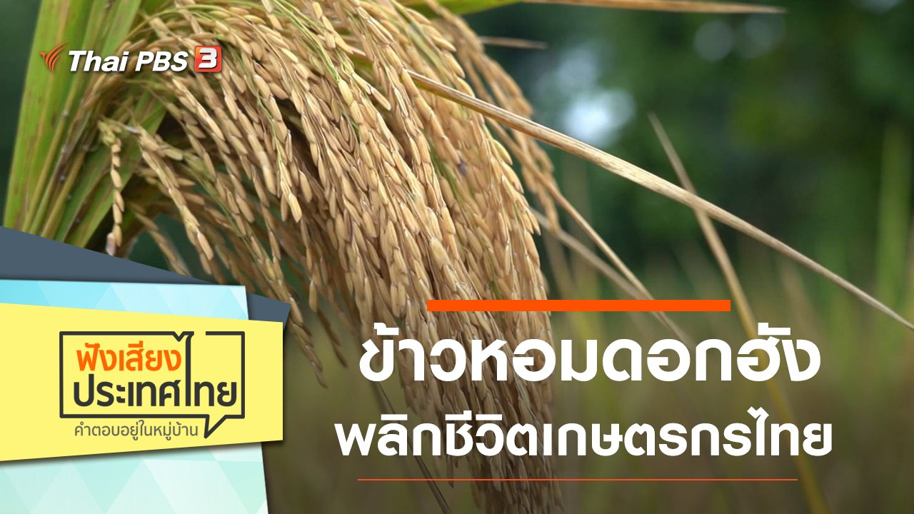 ฟังเสียงประเทศไทย - ข้าวหอมดอกฮัง พลิกชีวิตเกษตรกรไทย กำหนดราคาขายด้วยตัวเอง