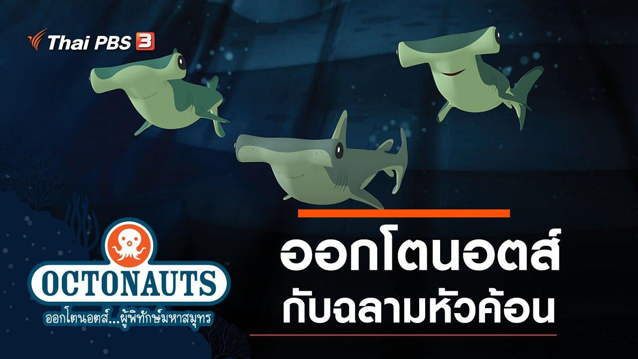 การ์ตูน ออกโตนอตส์...ผู้พิทักษ์มหาสมุทร - ออกโตนอตส์กับฉลามหัวค้อน