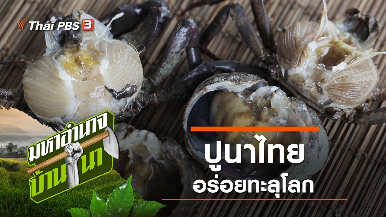 มหาอำนาจบ้านนา - ปูนาไทย อร่อยทะลุโลก
