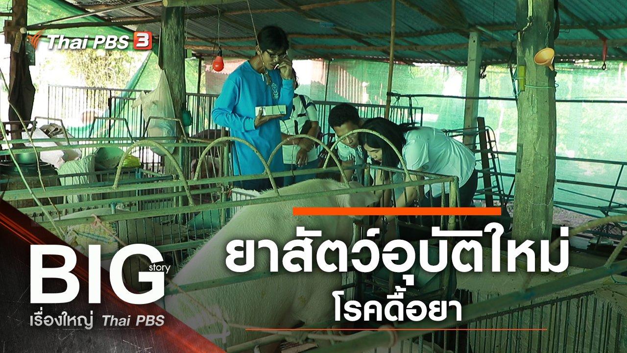 Big Story เรื่องใหญ่ Thai PBS - ยาสัตว์อุบัติใหม่...โรคดื้อยา
