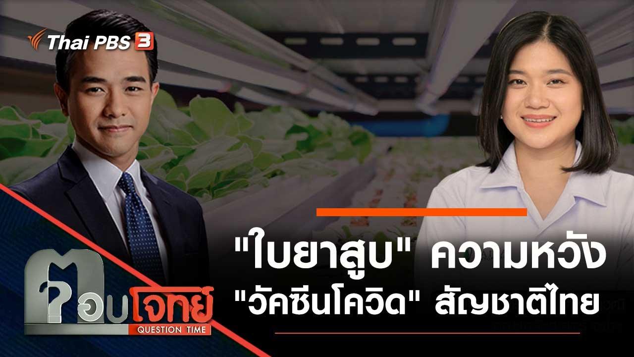 """ตอบโจทย์ - """"ใบยาสูบ"""" ความหวัง """"วัคซีนโควิด"""" สัญชาติไทย"""
