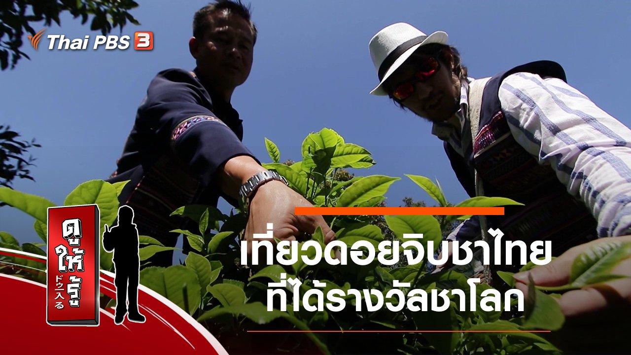 ดูให้รู้ Dohiru - เที่ยวดอยจิบชาไทยที่ได้รางวัลชาโลก