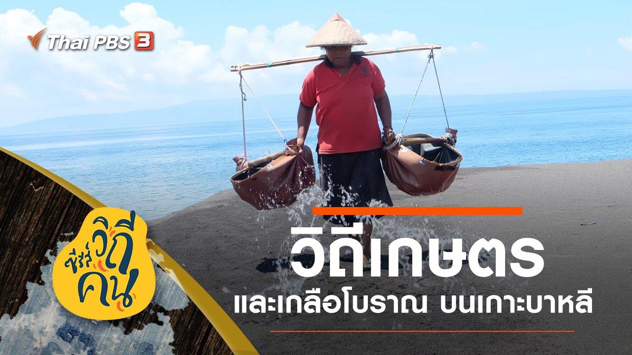 """ซีรีส์วิถีคน - วิถี """"เกษตรและเกลือโบราณ"""" เกาะบาหลี ประเทศอินโดนีเซีย"""