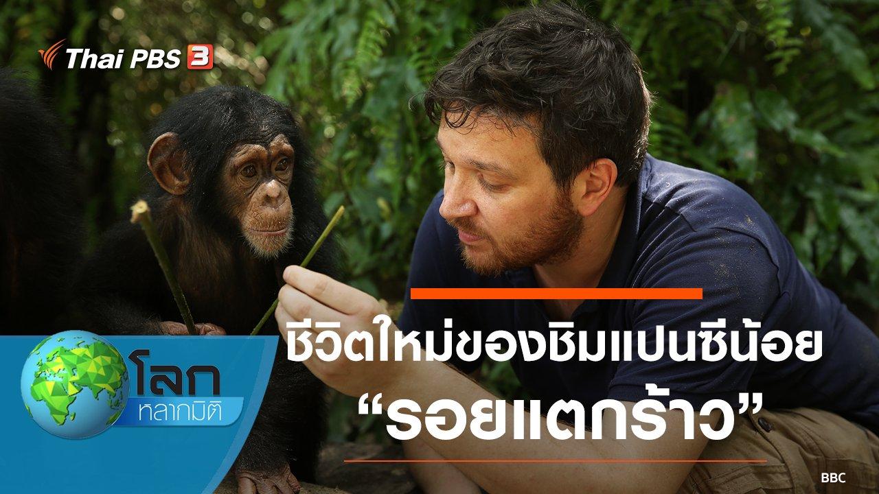 โลกหลากมิติ - ชีวิตใหม่ของชิมแปนซีน้อย ตอน รอยแตกร้าว