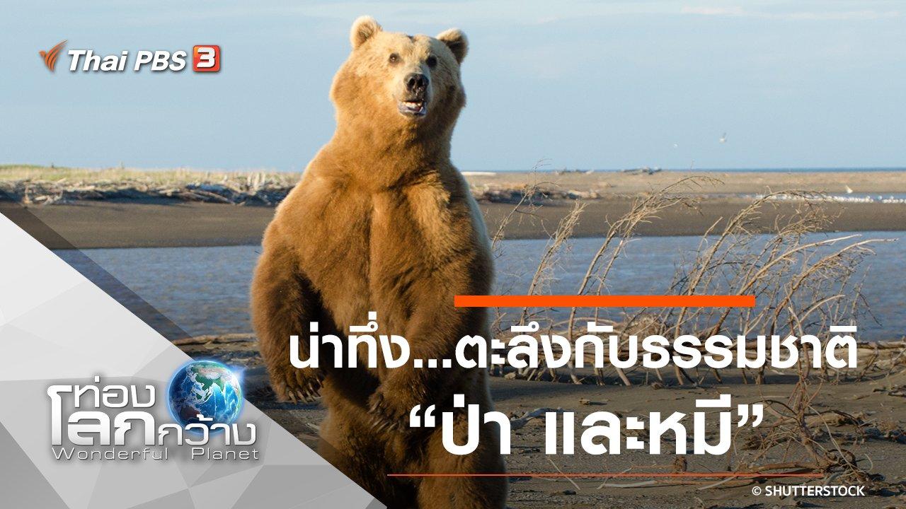ท่องโลกกว้าง - น่าทึ่ง...ตะลึงกับธรรมชาติ ตอน ป่า และหมี