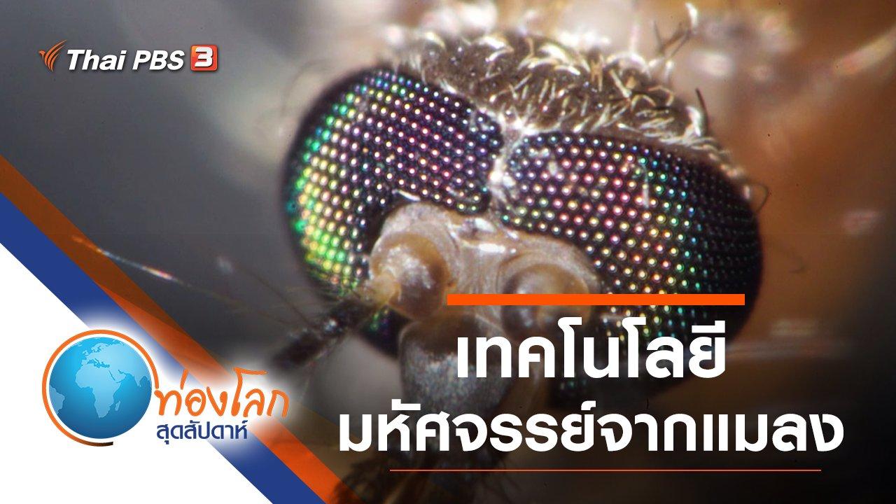ท่องโลกสุดสัปดาห์ - เทคโนโลยีมหัศจรรย์จากแมลง